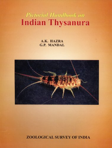 Pictorial Handbook on Indian Thysanura: A. K. Hazra, G. P. Mandal