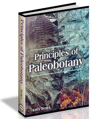 9788182930247: Principles of Paleobotany