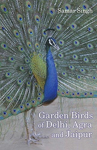 Garden Birds of Delhi, Agra and Jaipur: Samar Singh