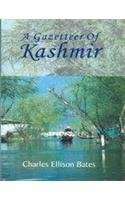 Troubled Kashmir: Exasperated Essays in Its Contemporary Politics