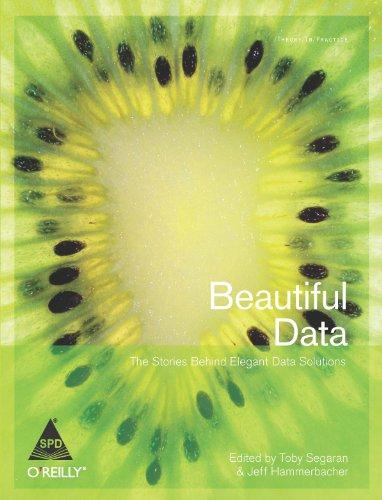 Beautiful Data: The Stories Behind Elegant Data Solutions: Jeff Hammerbacher,Toby Segaran