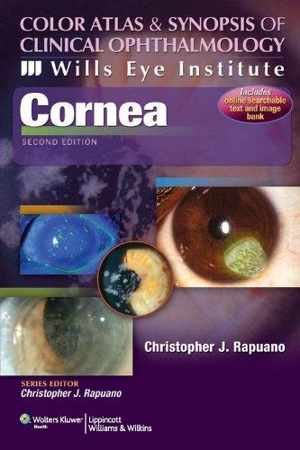 9788184737196: Cornea:C A & Synopsis-Wills Eye Institute 2/e