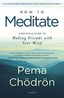 9788184958058: How to Meditate