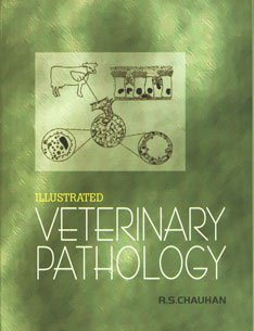 9788185860763: Illustrated Veterinary Pathology