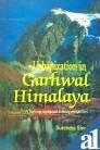 9788185880693: Urbanization in Garhwal Himalaya: A geographical interpretation