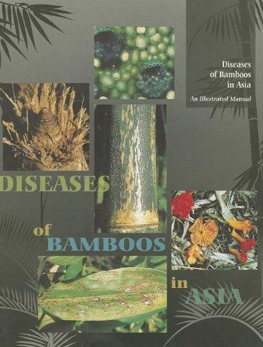 Bamboos in Asia: An Illustrated Manual: Mohanan, C.