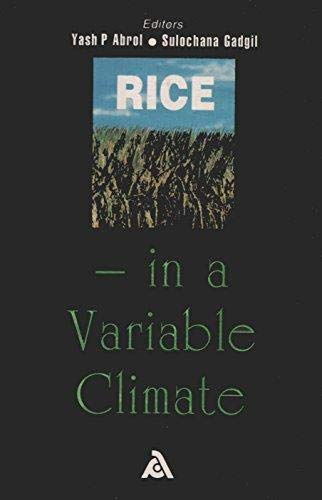 9788186580349: Rice: In a Variable Climate