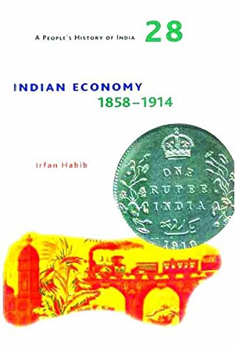 9788189487928: Indian Economy 1858-1914 (People's History of India)