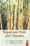 Sugarcane Pests and Diseases: T V Sathe; K P Shinde; A L Shaikh and D K Raut