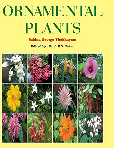 Ornamental Plants: Sabina George Thekkayam