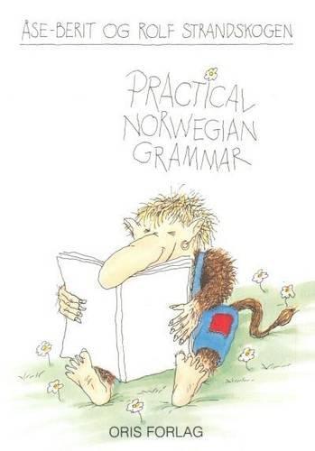 Practical Norwegian Grammar (English and Norwegian Edition)