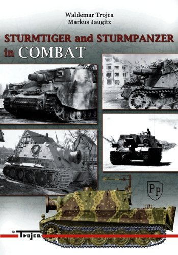 9788360041291: Sturmtiger and Sturmpanzer in Combat