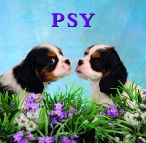9788378440994: Psy (polish)