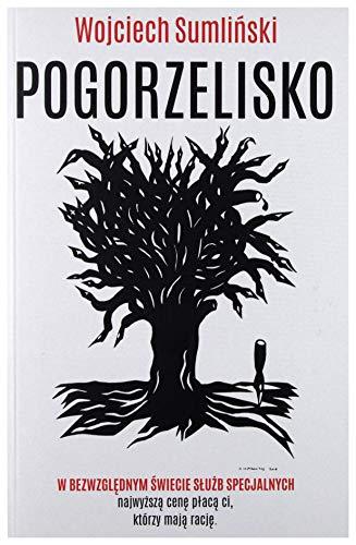 9788394293451: Pogorzelisko - Wojciech SumliĹ ski [KSIÄ ĹťKA]