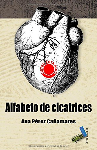9788415019107: Alfabeto de cicatrices (Poesía)