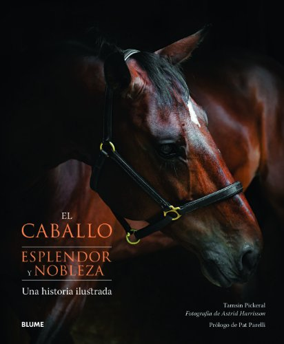 9788415317074: El caballo. Esplendor y nobleza