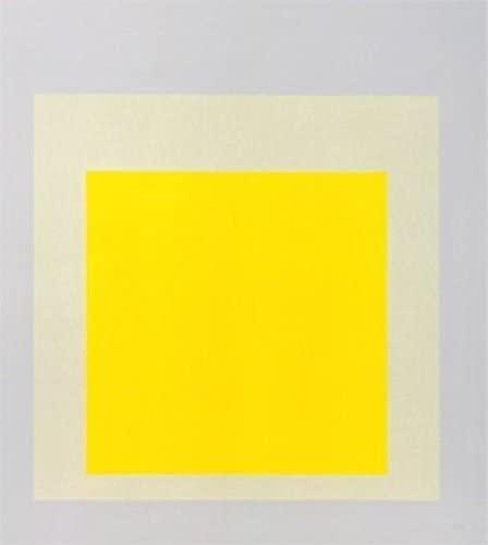 9788415691747: Josef Albers: Minimal Means, Maximum Effect