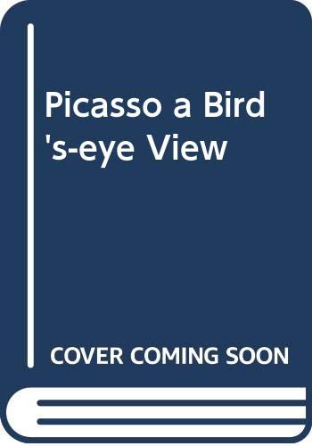 9788415835899: Picasso a Bird's-eye View