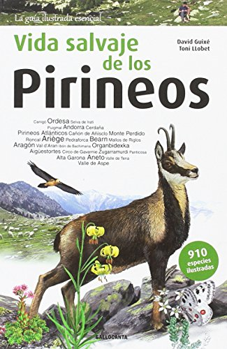 9788415885542: Vida Salvaje de Los Pirineos (La guia essencial)
