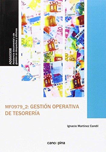 MF0979 Gestion operativa de tesoreria