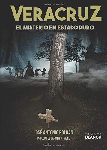 9788416808052: Veracruz, el misterio en estado puro