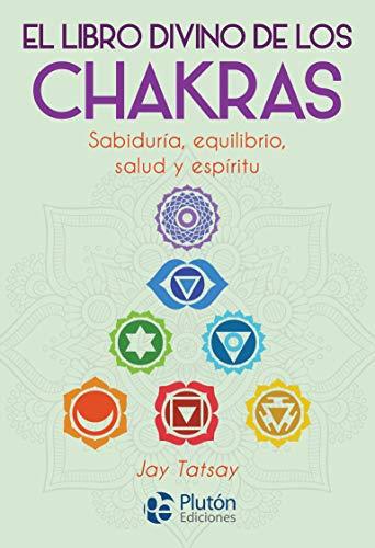 9788417079987: El Libro divino De Los Chakras (Colección Nueva Era)