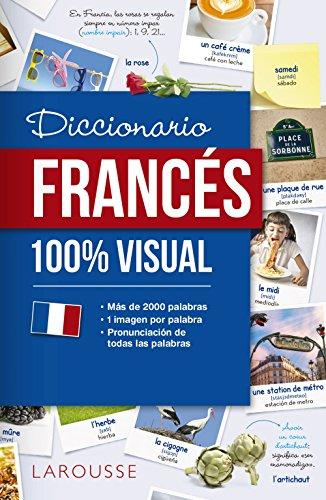 9788417273064: Diccionario de francés 100% Visual