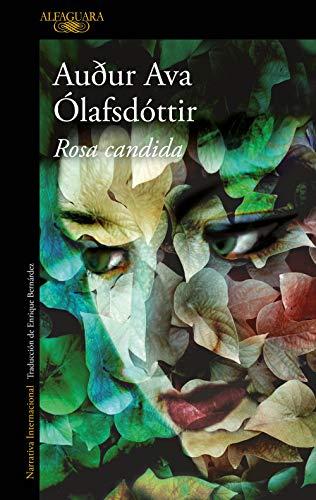 9788420407913: Rosa candida (LITERATURAS)