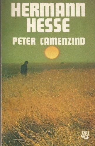 9788421741542: Peter Camenzind