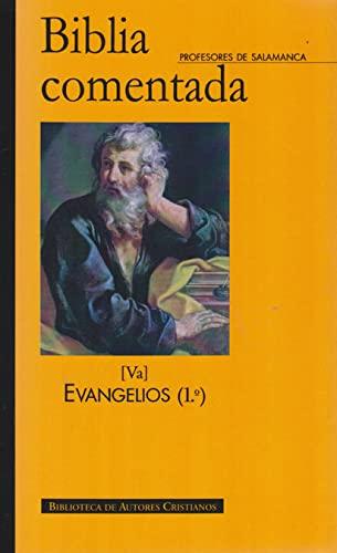 Biblia comentada. Tomo Va. Evangelios (1º): Profesores de la