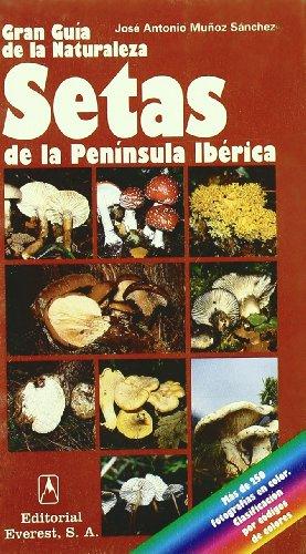 9788424126896: Setas de la Península Ibérica: Cómo reconocer y clasificar los primeros hongos de la Península Ibérica. (Grandes guías de la naturaleza)