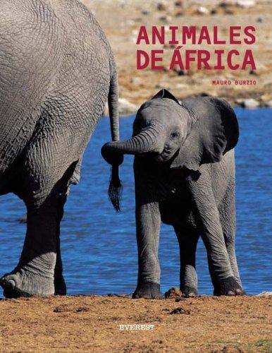 Animales de Africa (Spanish Edition): Burzio, Mauro