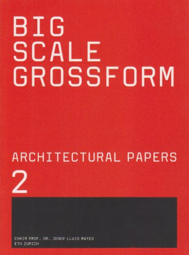 Big Scale (Architectural Papers of the Eth Zurich) (English and German Edition): MATEO(221668)