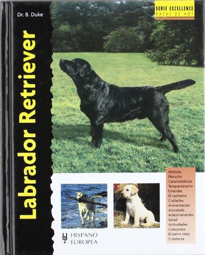 9788425512827: Labrador Retriever (Excellence)