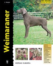 9788425513985: Weimaraner (Excellence- Razas de Hoy / Excellence- Today's Breed) (Spanish Edition)