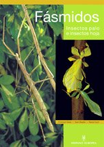 9788425516399: Fasmidos/ phasmids: Insectos palo e insectos hoja/ Stick And Leaf Insects (Spanish Edition)