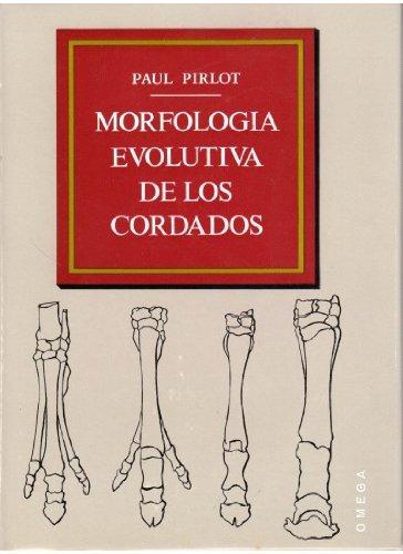 9788428204309: MORFOLOGIA EVOLUTIVA DE LOS CORDADOS (ZOOLOGIA)