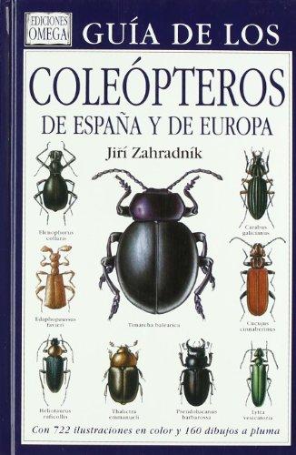 9788428207812: GUIA COLEOPTEROS DE ESPAÑA Y DE EUROPA (GUIAS DEL NATURALISTA-INSECTOS Y ARACNIDOS)