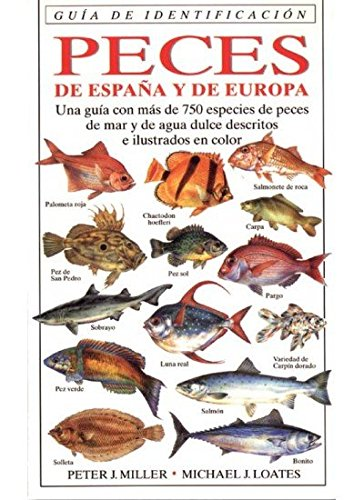 9788428211239: Peces de España y de Europa : guía de identificación