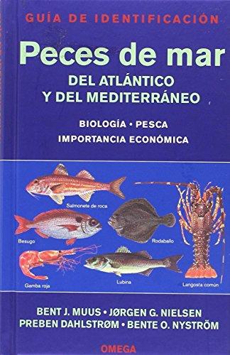 9788428211611: PECES DE MAR. GUIA DE IDENTIFICACION (GUIAS DEL NATURALISTA-PECES-MOLUSCOS-BIOLOGIA MARINA) (Spanish Edition)