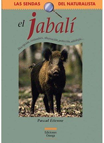 9788428213929: EL JABALÍ (GUIAS DEL NATURALISTA-MAMIFEROS)