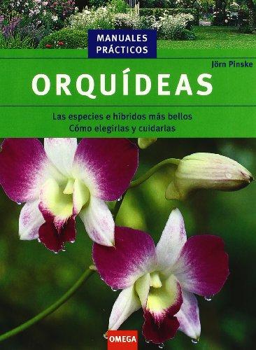 9788428213974: Orquídeas