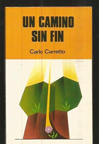 Un Camino Sin Fin (9788428511698) by [???]