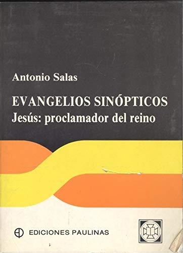 9788428515863: Evangelios sinopticos