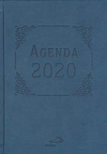 9788428557122: Agenda 2020