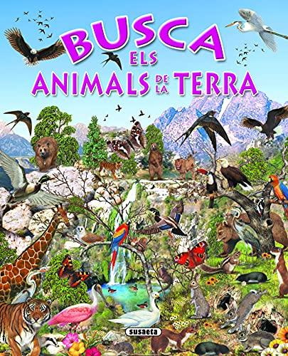 9788430534197: Busca els animals de la terra