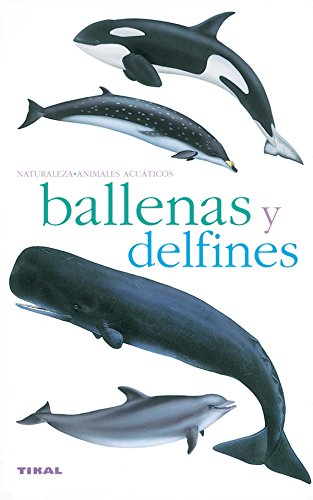 9788430553952: Ballenas Y Delfines/ Whales and Dolphins (Spanish Edition)