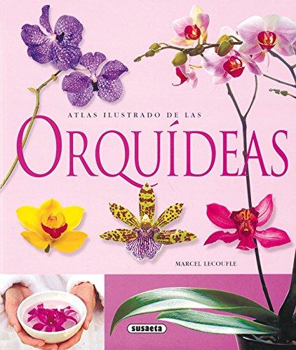 9788430563715: Orquideas Atlas Ilustrado De Las