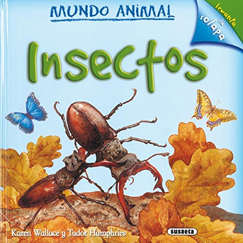 9788430569304: Insectos/ Minibeasts (Mundo Animal/ Animal World) (Spanish Edition)