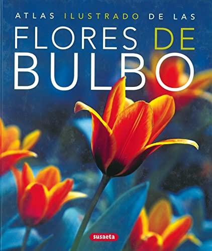 9788430570324: Atlas ilustrado de las flores de bulbo/ Illustrated Atlas of Bulb Flowers (Spanish Edition)